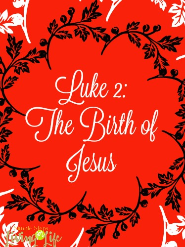 Luke 2 The Birth of Jesus