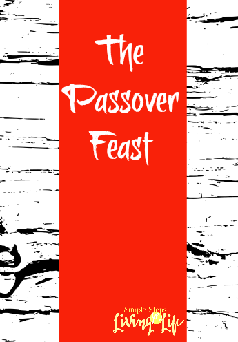 Some of my thoughts about the Passover Feast