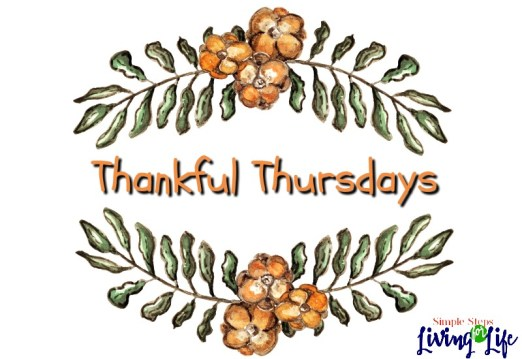 Thankful Thursdays is a day to remember things to be thankful for.