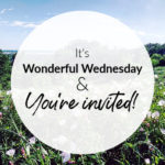 Wonderful Wednesday Party!