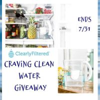 Craving Clean Water Giveaway ends 7/31/2020