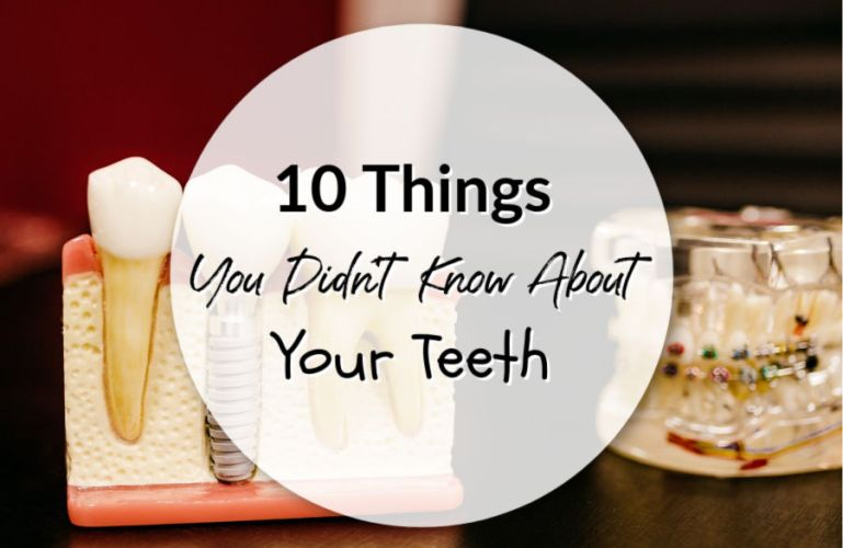 10 Things You Didn't Know About Your Teeth