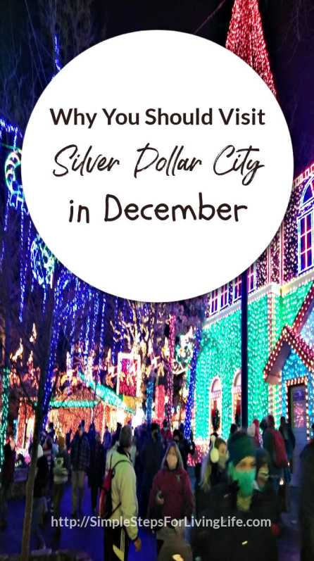why you should visit silver dollar city in december pin