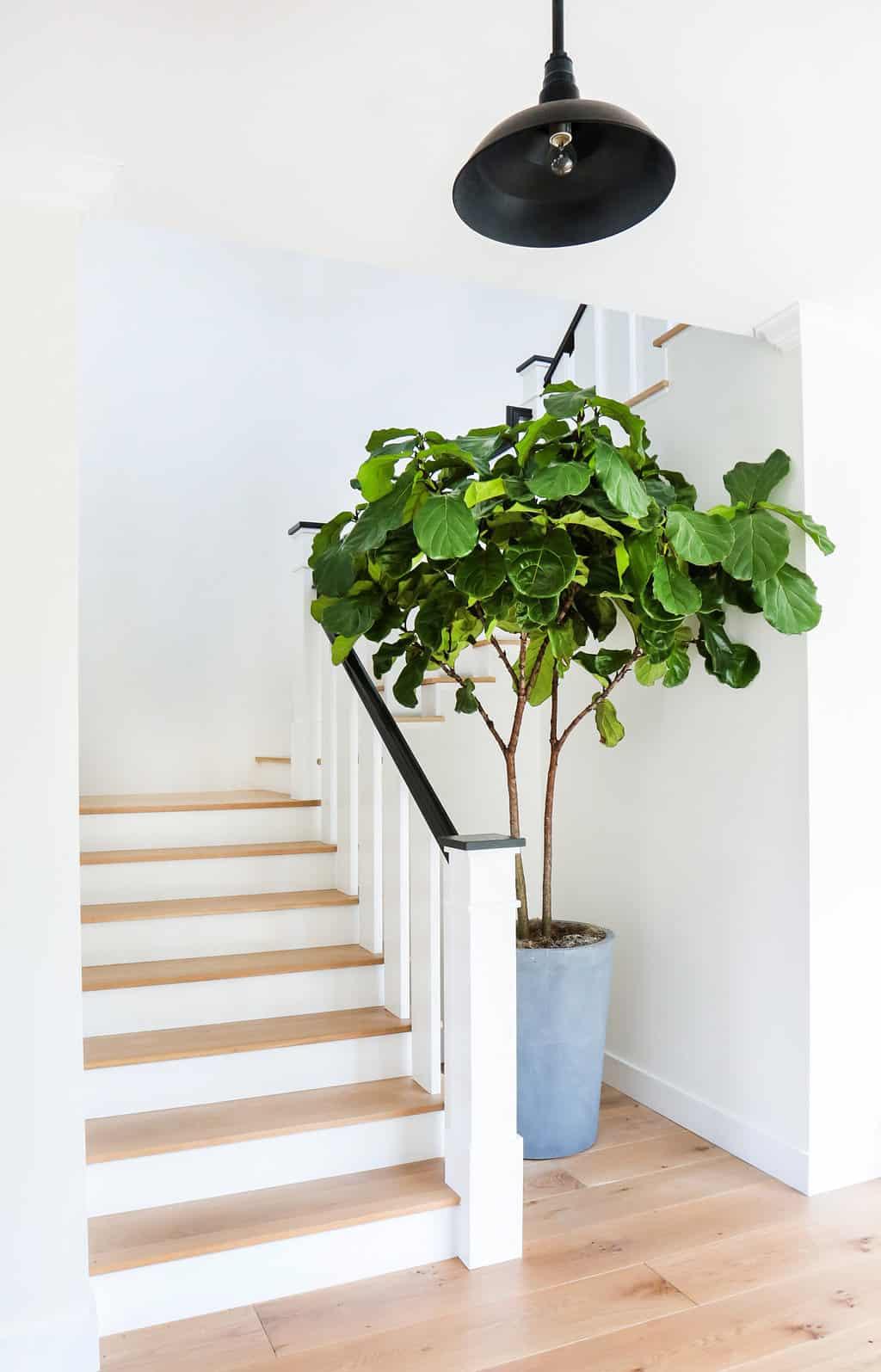 HOM-Modern-Farmhouse-With-Coastal-Flare-by-Blackband-Design-stairs