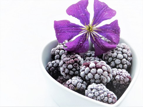 blackberries-2546146_960_720