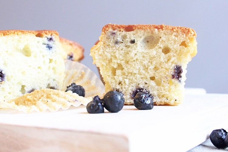 keto blueberry muffin recipe