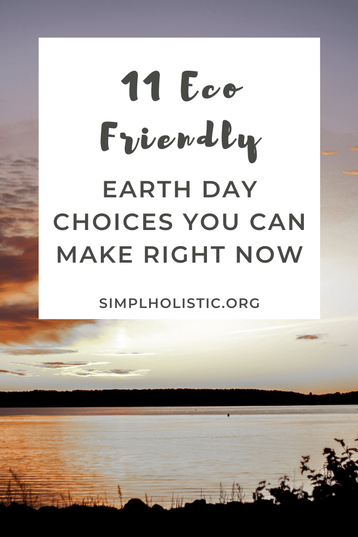 11 Earth Day Eco Friendly Choices You Can Make for Cheap