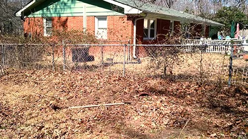 Tons of leaves, brier, ivy, and mess when we first started with the yard.