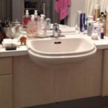 bathroom sink - before