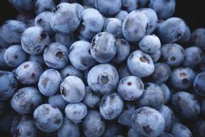 pixabay blueberries