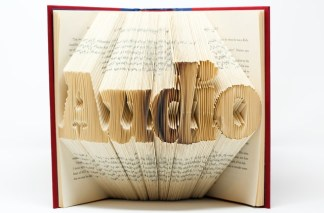 "An open book with its pages folded into a shape of the word ""Audio"""
