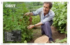 Gartentipp: Obst anbauen