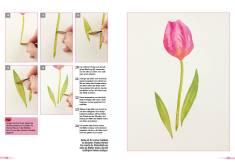 Malanleitung - Tulpe - Deine Malschule Teil 2