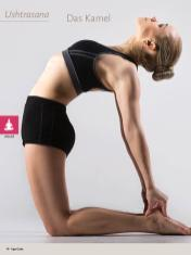 Yoga-Anleitung - Das Kamel - Yoga - der große Guide - 01/2018
