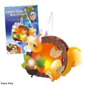 Blogbilder-Folia-Laternen-Eichhörnchen