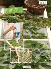 Rezept - Brennnesseltee - Clean Food - olala solala mit Andrea Sokol - 01/2019