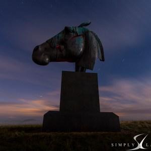 Artemis by night