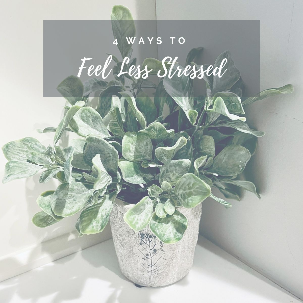 4 ways to feel less stressed image