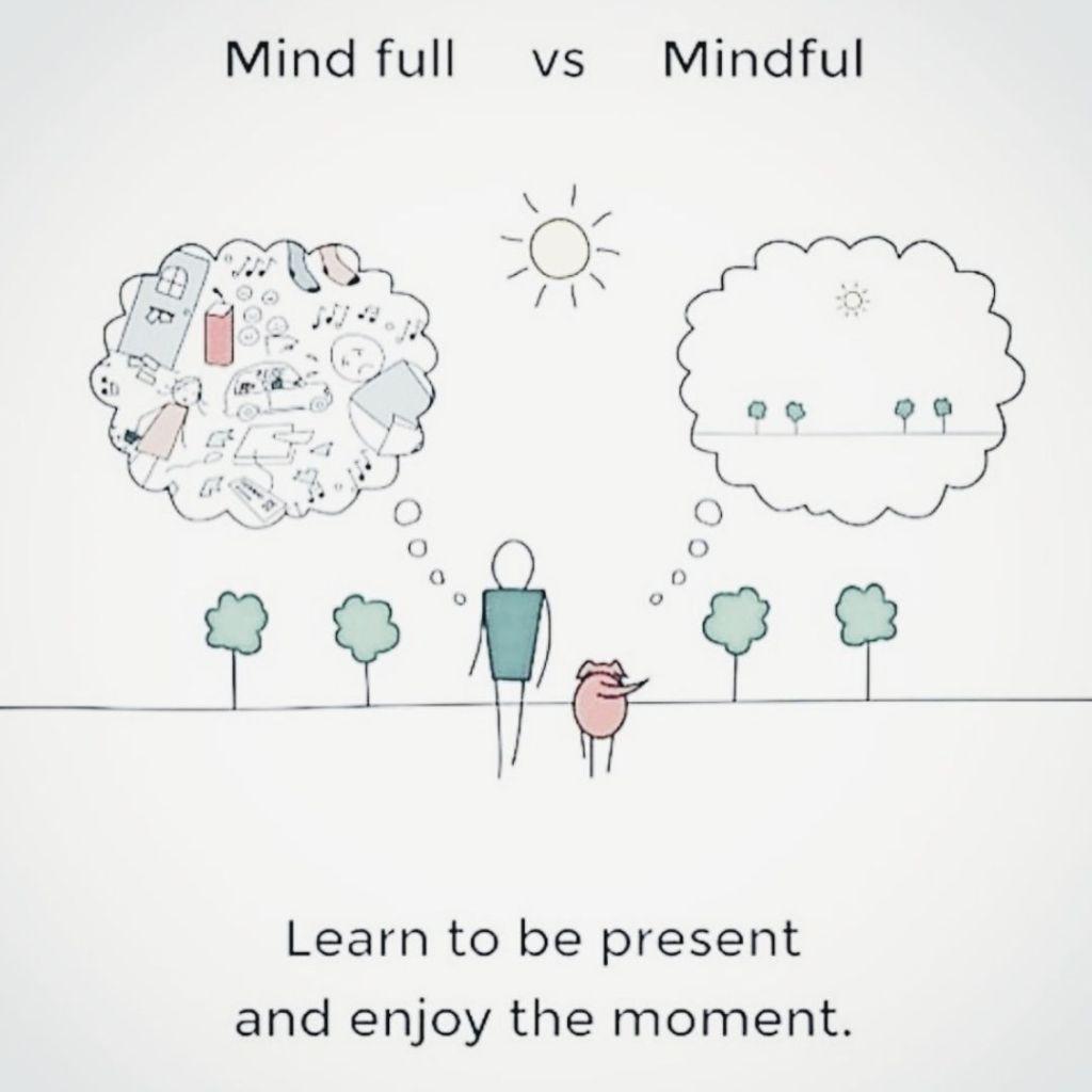 Mind full vs Mindful image