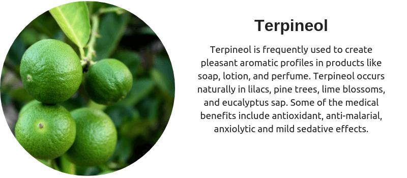 Cannabis terpene Terpineol