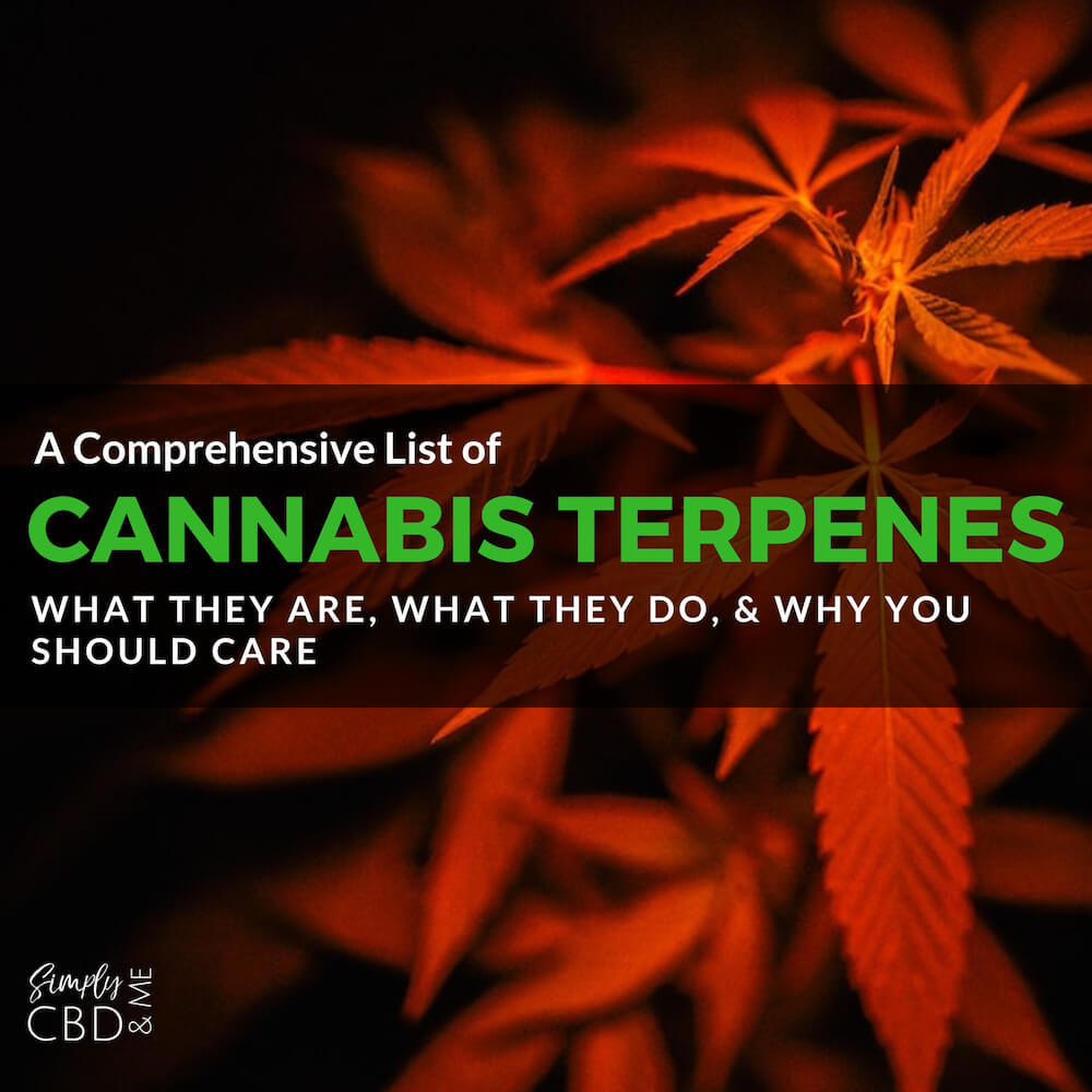 A Comprehensive List of Cannabis Terpenes: What they are, what they do, and why you should care!