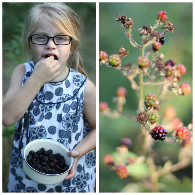 SimplyDanishLiving_Blackberrypicking2