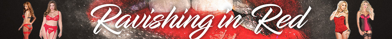 sexy women's red lingerie banner