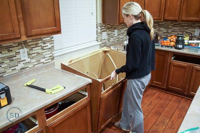 Dishwasher Disconnect Disposal Garbage