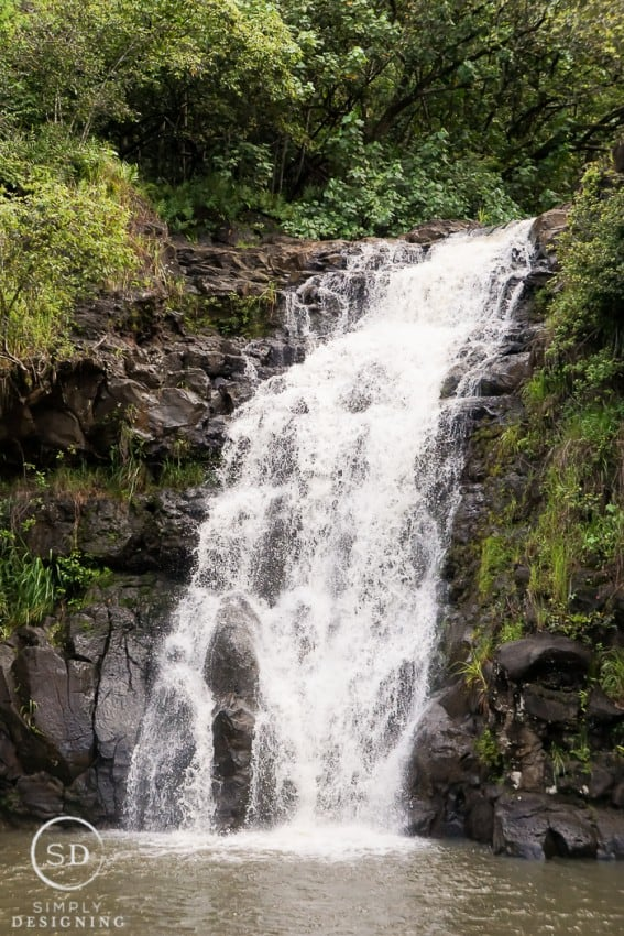 Waimea Valley and Waimea Waterfall