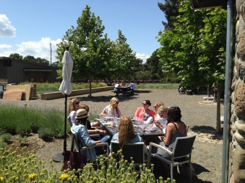 Paradox dog friendly wineries outdoor Simply Driven