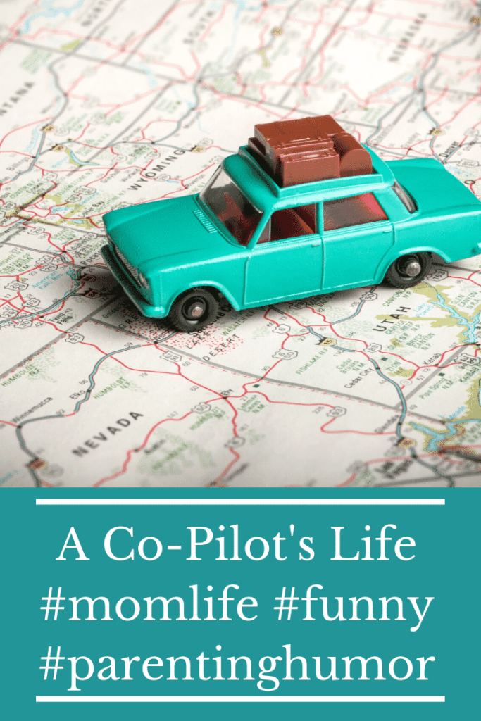 A Co-Pilot's Life - a humorous glimpse of motherhood  and parenting #momlife #funny #humor #parenting