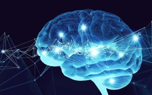 How Mobile Technology Is Actually Rewiring Our Brains