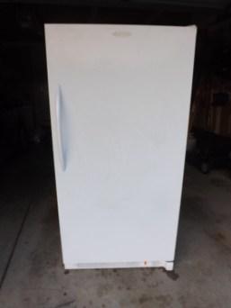Freezer Blog-1