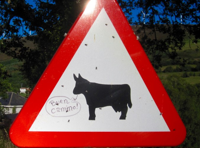 """Buen camino"" is the common greeting form on the Camino in Spain. When Spanish people see a peregrino (pilgrim), they also greet with buen camino. I liked the fact that a cow was included."
