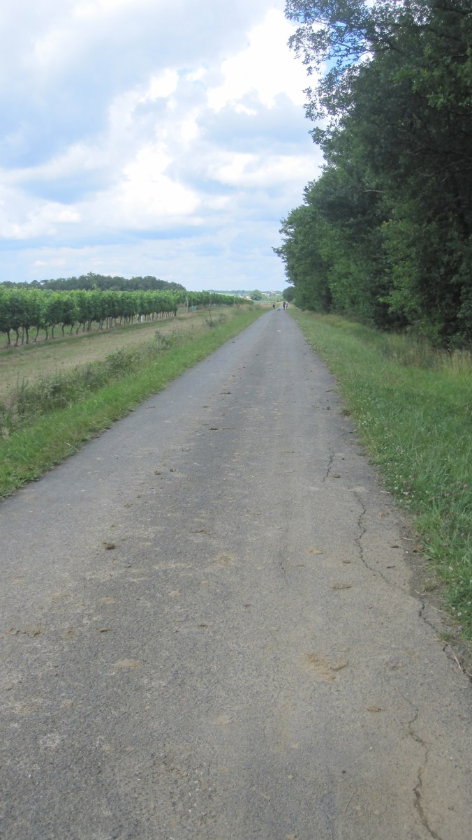 Miles of asphalt streets straight to the west