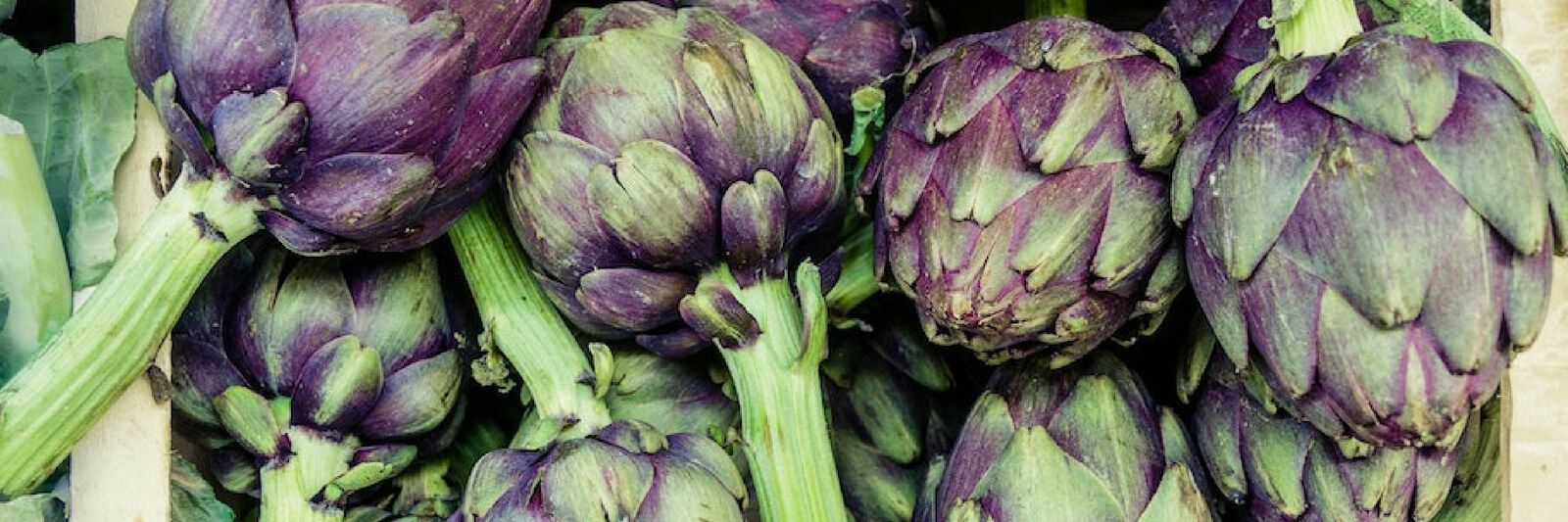 The Ketogenic Diet Food List