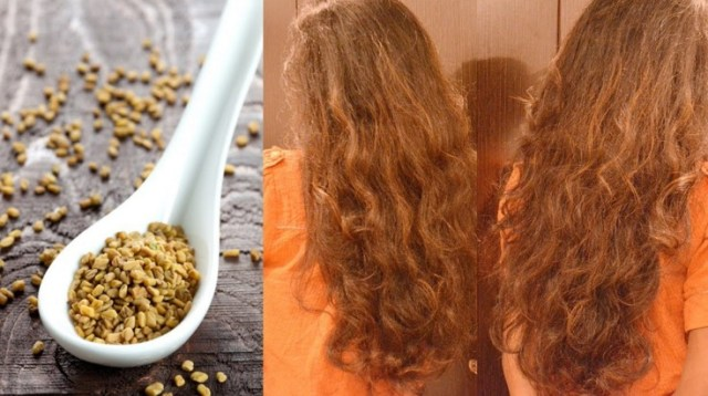 Fenugreek Seeds To Stop Hair Fall