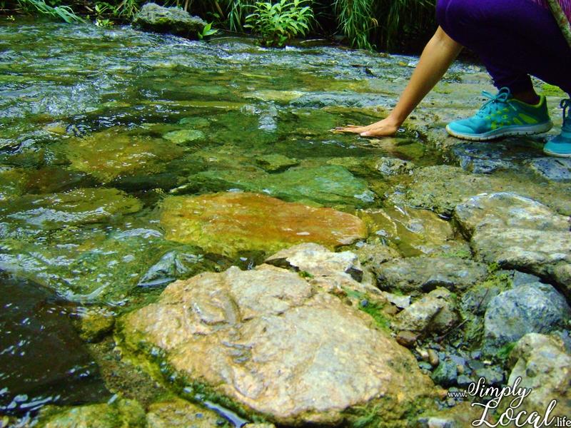 Blue Mountains Jamaica river