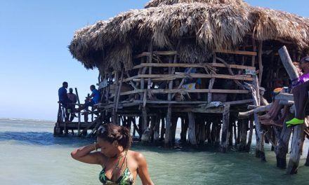 Drink in the Caribbean Sea at Floyd's Pelican Bar