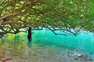 Blue Lagoon woman under tree Portland Jamaica