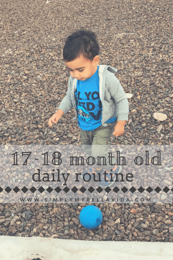 17-18 month old schedule