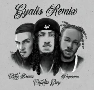 Capella Grey & Popcaan Ft. Chris Brown – GYALIS (Remix)