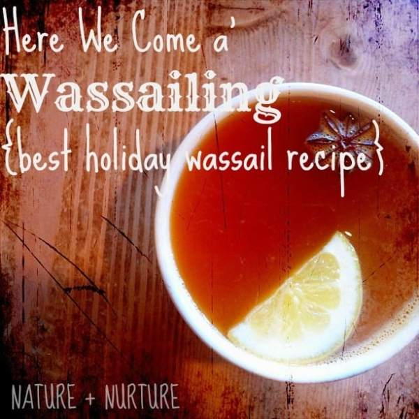 Wassail Recipe: Here We Come a' Wassailing!