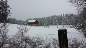 Picturesque barn in Crow Valley