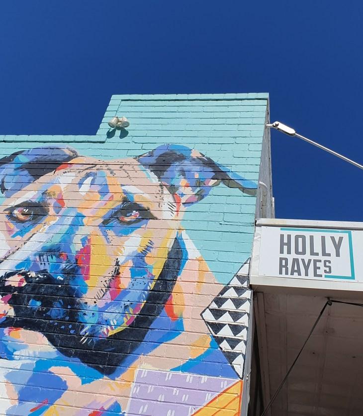 Holly Rayes