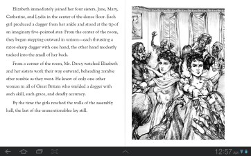 Play Books also supports illustrations.