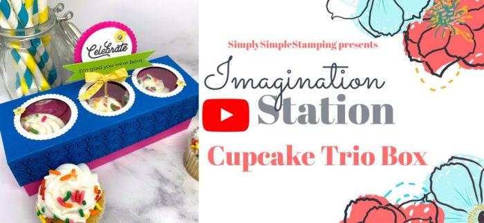 cupcake-box-diy-for-gift-or-bake-sale-idea