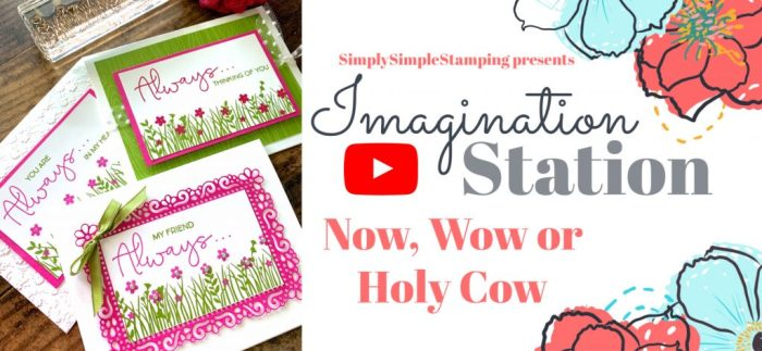 make-beautiful-cards-with-connie-stewart-simply-simple-stamping