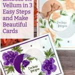 Emboss on Vellum in 3 Easy Steps and Make Beautiful Cards