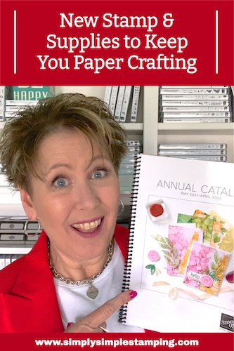 Want to See the Most Exciting New Treasure in My Craft Supplies?